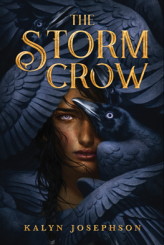 the-storm-crow