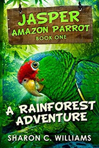 A Rainforest Adventure